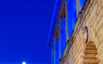 Verona Blu